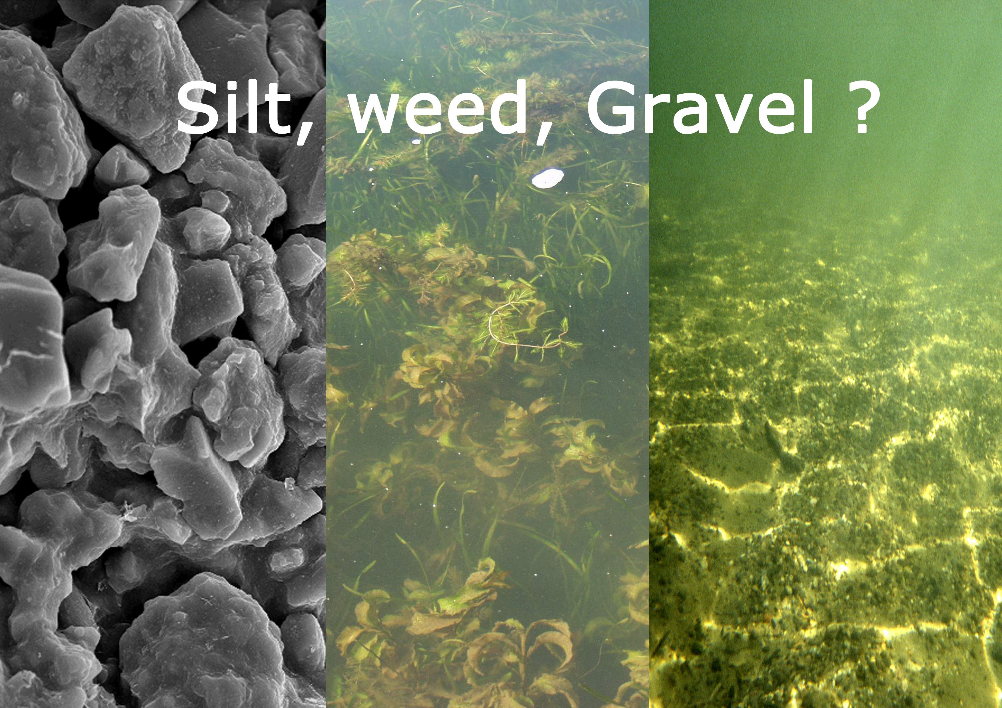 SILT, WEED, GRAVEL? – Bite Edge